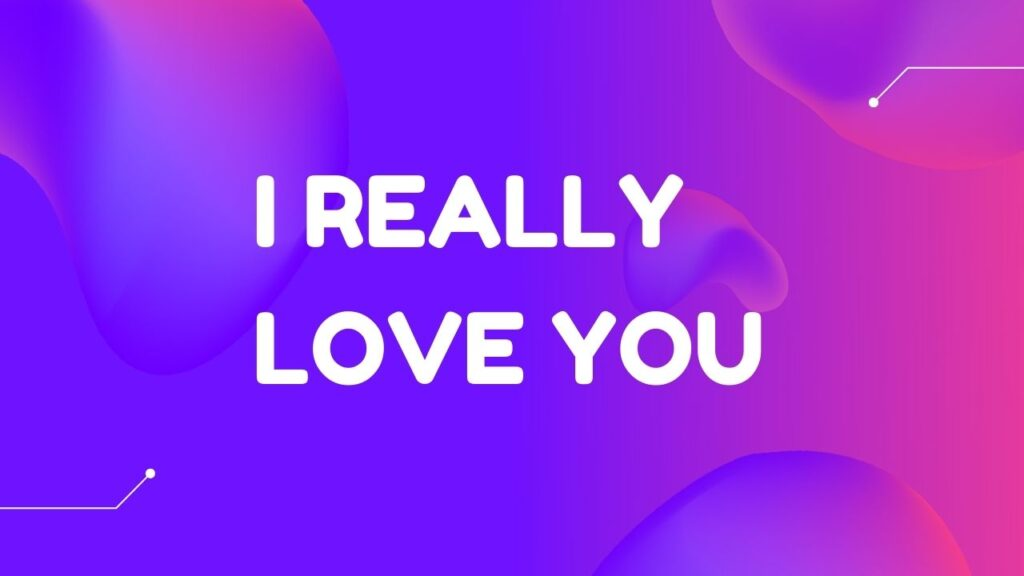 I Really Love You Meaning in Hindi