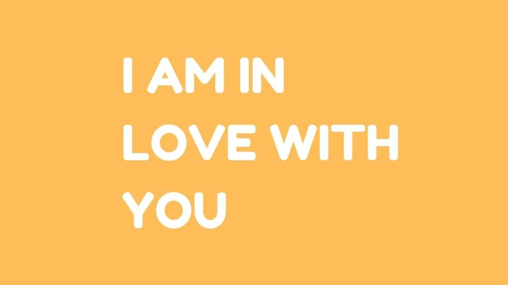 I am in Love with You Meaning in Hindi
